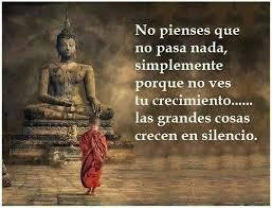 Tarot Del Buda (Renacimiento Espiritual)