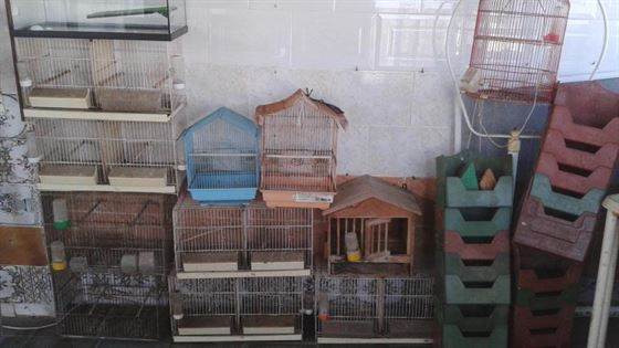Se venden lotes de jaulas para pajaros,codornices,loros,piscina de tortugas.