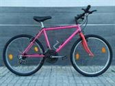Bicicleta Suntrack Pinzon